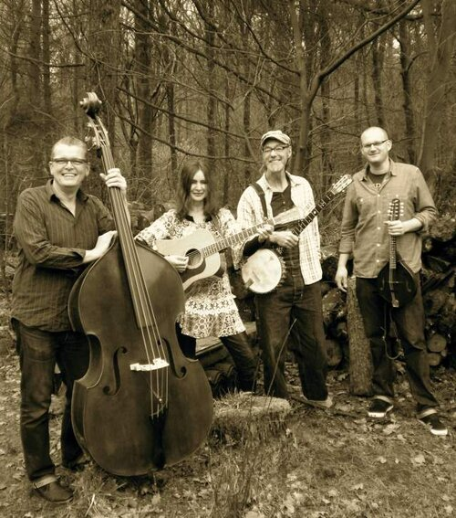 Tree Mountain Stringband